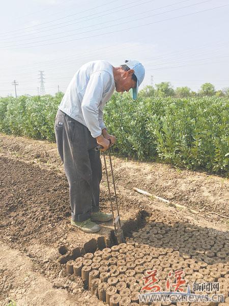 平凡的劳动者 用双手创造着美好生活和未来