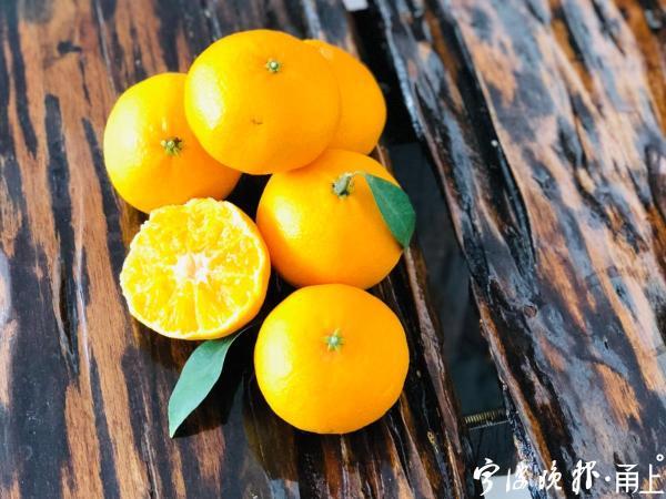 """宁波人爱吃的这类水果如何挑、剥、吃?""""冷""""知识来了"""